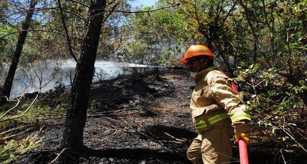 Alanya'da iki ayrı yangın