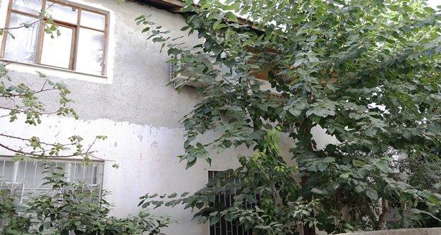 Ağaca tırmanarak eve giren hırsız, polisin beylik tabancasını çaldı