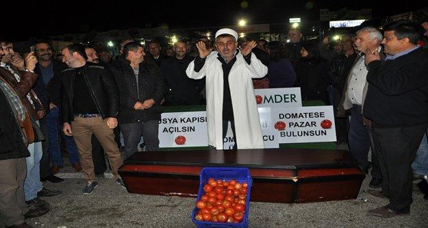 Çiftçiler domatesin cenazesini kaldırdı