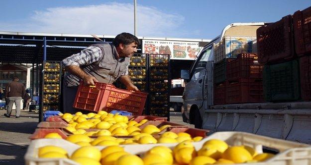 Antalya halinde çiftçilerin eylemi bitti