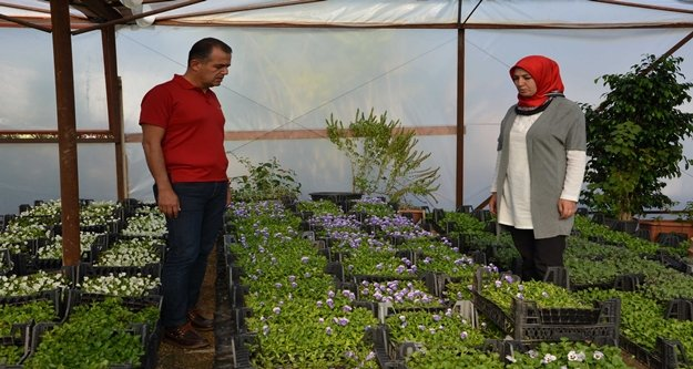 Büyükşehir Alanya'da  çiçeğini kendi üretiyor