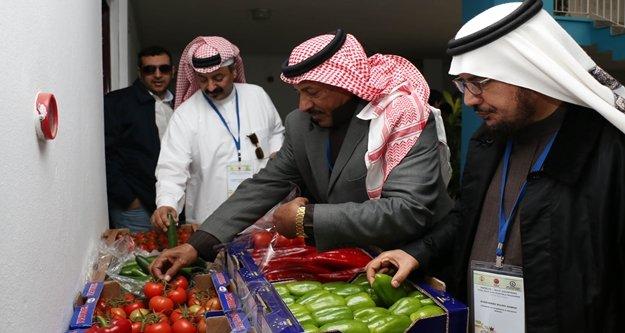 'Antalya sebze ve meyve deposu'