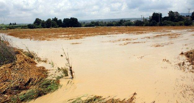 Komşuda tarım alanlarını sel bastı