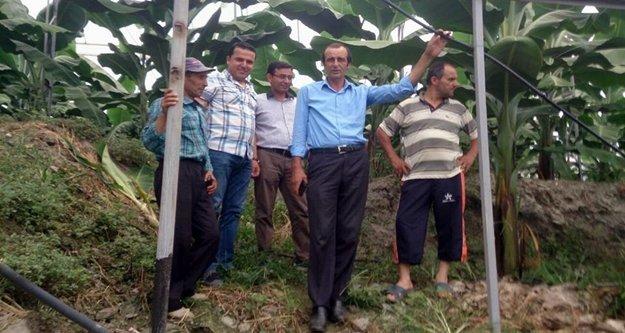 Musluoğlu: KDV çiftçiye geri ödenmeli