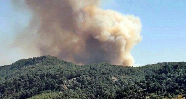 Antalya'da yangınlar durmuyor: Bir orman yangını daha