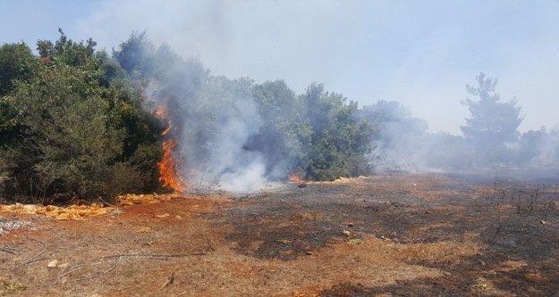 Çalılık alanda yangın: Müdahale devam ediyor