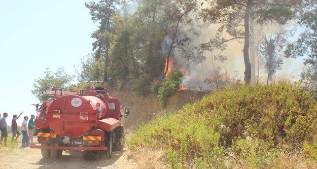 Komşumuz Manavgat'ta yangın paniği