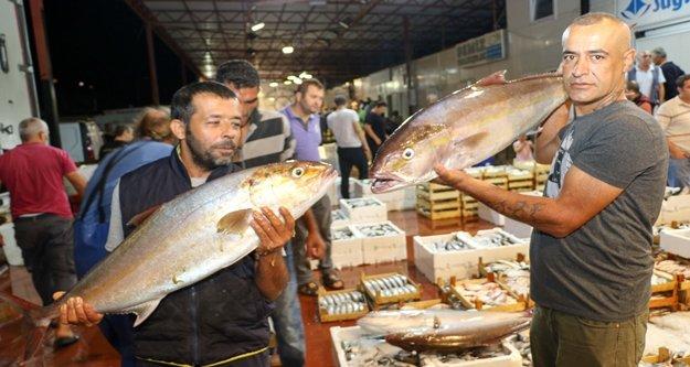 Akdenizli balıkçılar sezonu davul zurnayla açtı