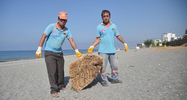 Alanya'da sahiller temizleniyor