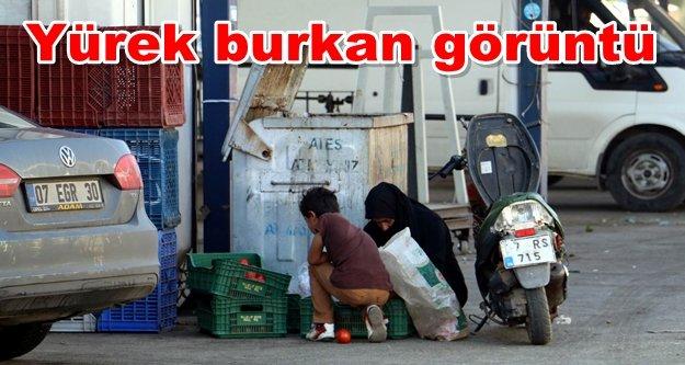 Çöp konteynerinden pazar alışverişi