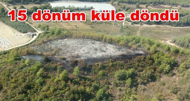 Komşuda panik! 2 ayrı orman yangını çıktı