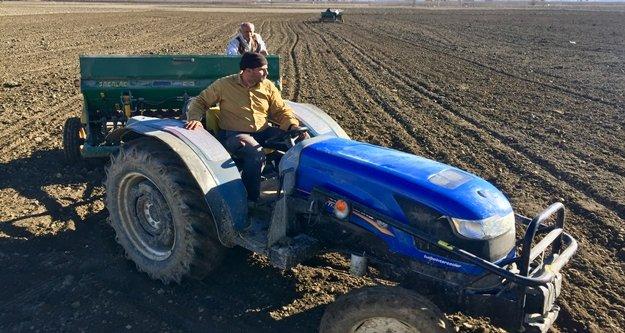 Antalya buğdayını arıyor projesi