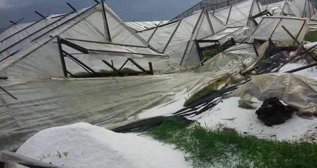 Kısa süreli yağış Alanya'da seraları vurdu