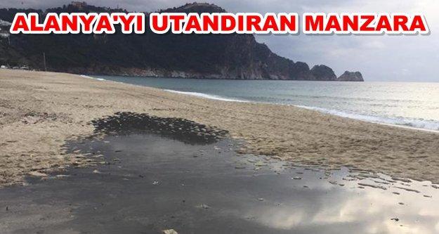 Dünyaca ünlü plajdan rezalet görüntüler