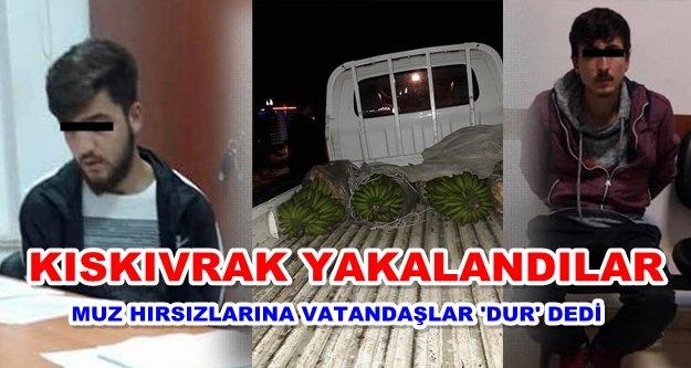 Alanya'daki muz hırsızları yakalandı