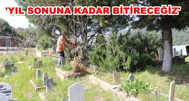 Beyreli'deki mezarlıklara bakım