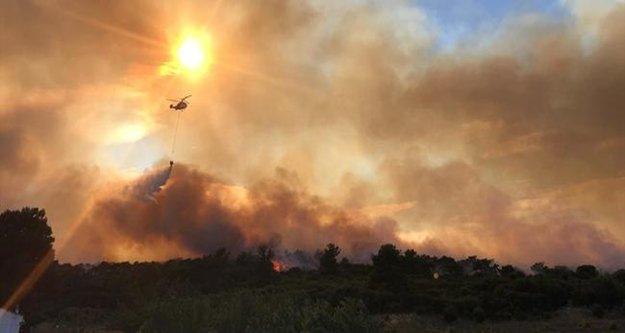 Alanya'da yangın panik yarattı