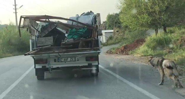 Köpeği iple kamyonetin arkasına bağlayıp sürükledi
