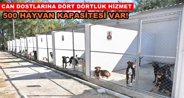 Türkiye'nin örnek tesisi hizmete devam ediyor