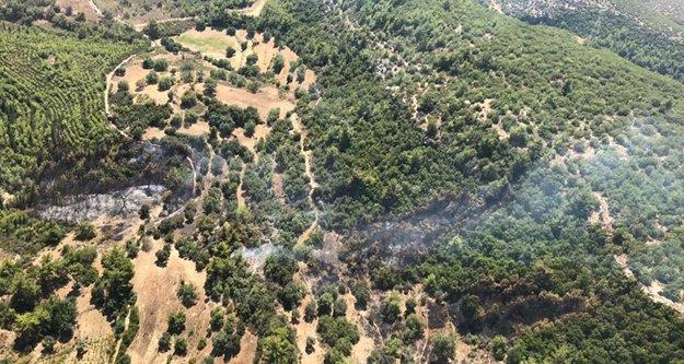 Komşuda yangın! 1 hektar alan küle döndü