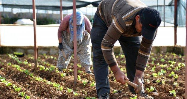 Büyükşehir Belediyesi, tarıma 4 yılda 210 milyondan fazla destek sağladı