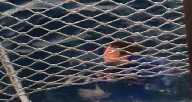 Denizden balıkçılar kurtardı