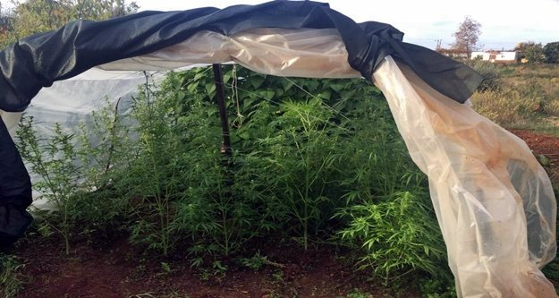 Alanya'da seraya uyuşturucu baskını