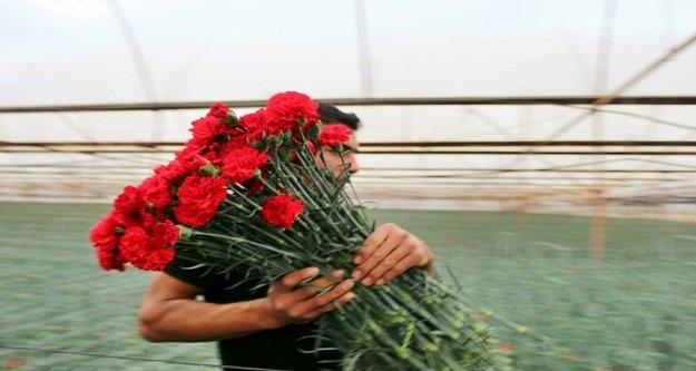 Dünyanın çiçeği Antalya'dan