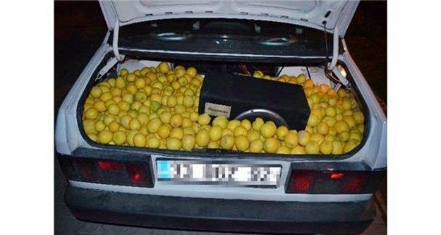 Limon hırsızları polisten kaçamadı