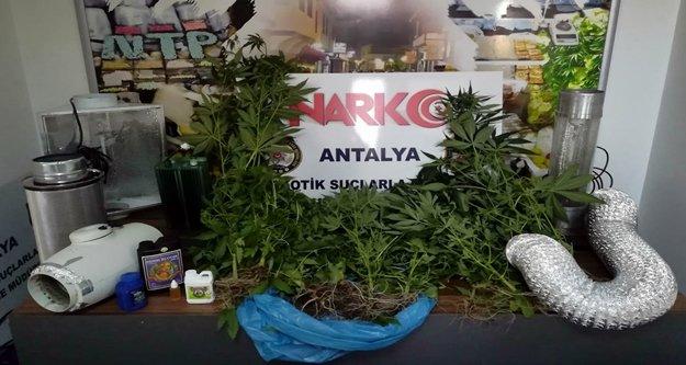 Narkotim'den uyuşturucu tacirlerine şok baskın