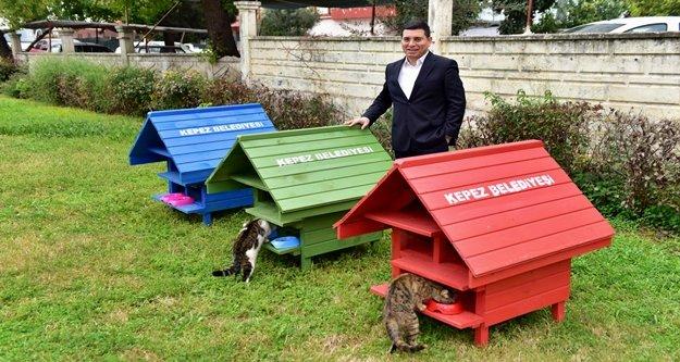 Parklar kedi evleriyle neşelendi