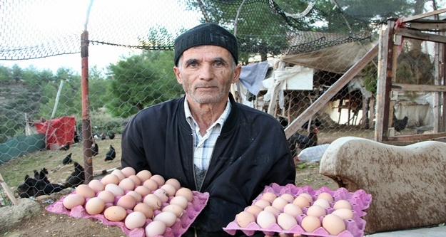 Son maaşıyla çiftlik kurdu zengin oldu