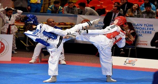 Ttaekwondo Başkanlık Kupası'na Türkiye damga vurdu