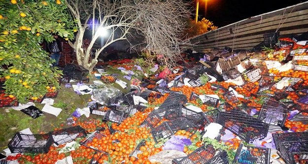 25 Ton domates yüklü tır devrildi, yol tarlaya döndü!