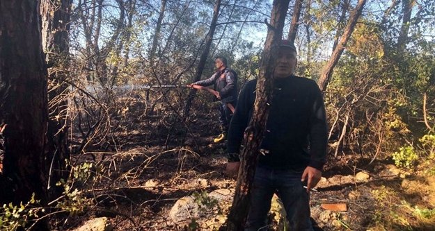 Çamlık yangını korkuttu!
