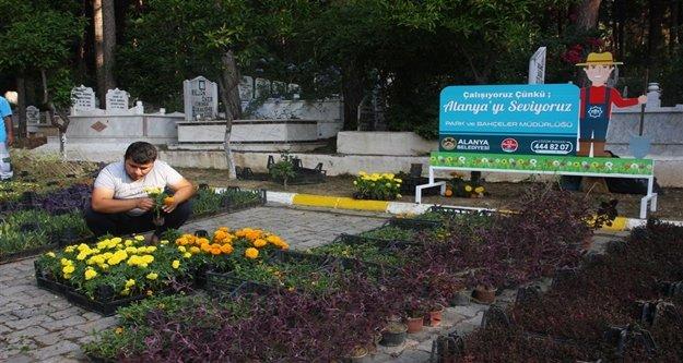 Alanya'da  mezarlıklara 50 bin çiçek dağıtılacak