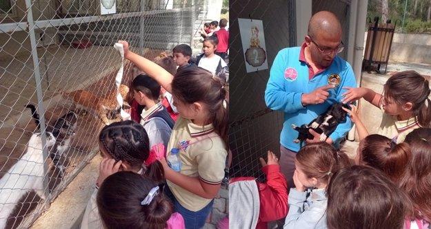 Çocuklar hayvan sevgisini Alanya Belediyesi ile öğreniyor