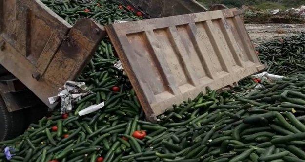Çöpe dökülen 13 kamyon salatalık için ne dediler?