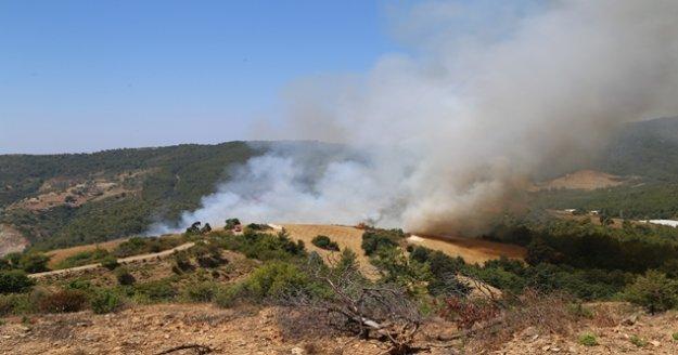 Alanya'da 100 dönümlük makilik ve ormanlık alan kül oldu