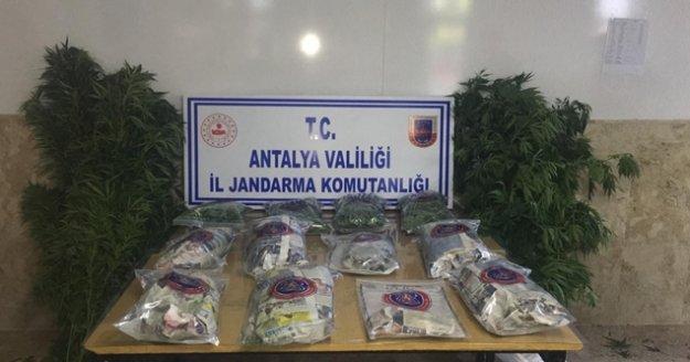 Antalya'da jandarmadan uyuşturucu operasyonu