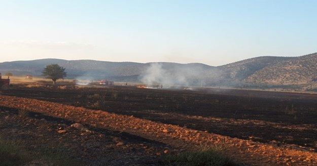 Kargalar 200 dekarlık anız ve ekin yangınına sebep oldu