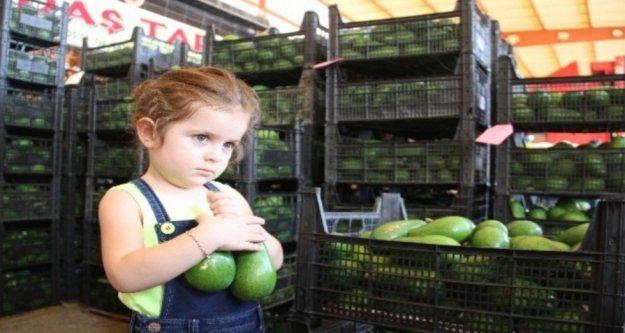 Alanya'dan Ukrayna'ya 3.5 ton avokado