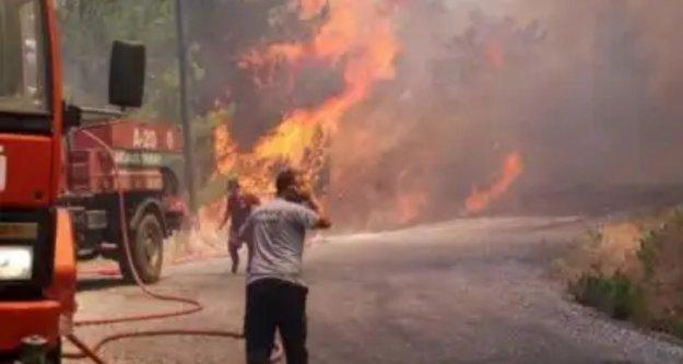 Alanya'yı korkutan orman yangını