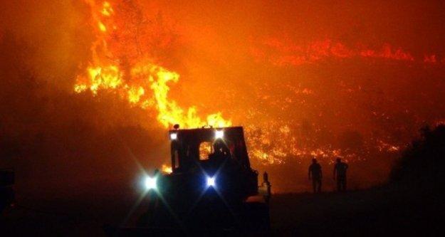 Komşuda 30 hektarlık ormanlık alan kül oldu