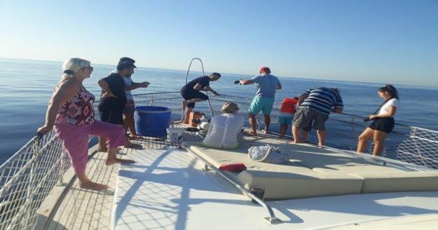 Tekne turu sırasında oltaya takılan 3 metrelik köpek balığı turistleri şoke etti