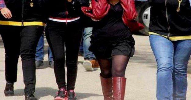 Fuhuş operasyonu: 7 kadın kurtarıldı
