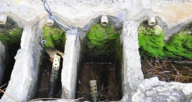 Türkiye'nin muz ihtiyacının 5'te birini karşılayan mahalle susuzluktan üretimi bırakıyor