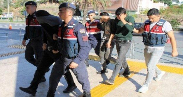 Alanya'da 30 bin liralık avokado çalan hırsızlar tutuklandı