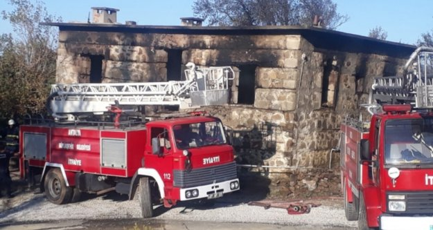 Alanya'da 38 hayvan yanarak telef oldu
