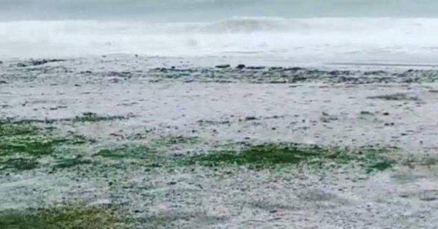 Alanya'da dolu yağışı sahilleri beyaza bürüdü